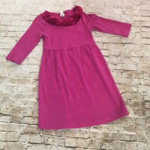 Crewcuts J.Crew dress cotton with roses size 6